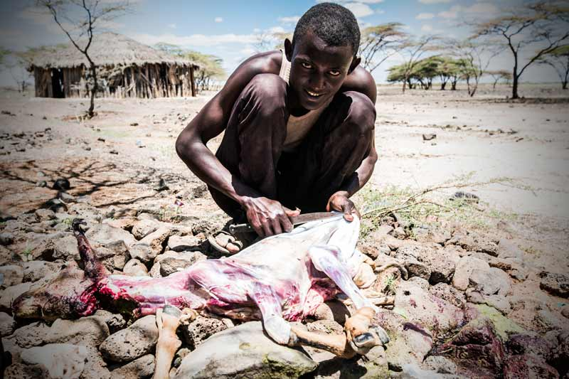 In Maikona, a young man slaughters the last goat from his family's herd