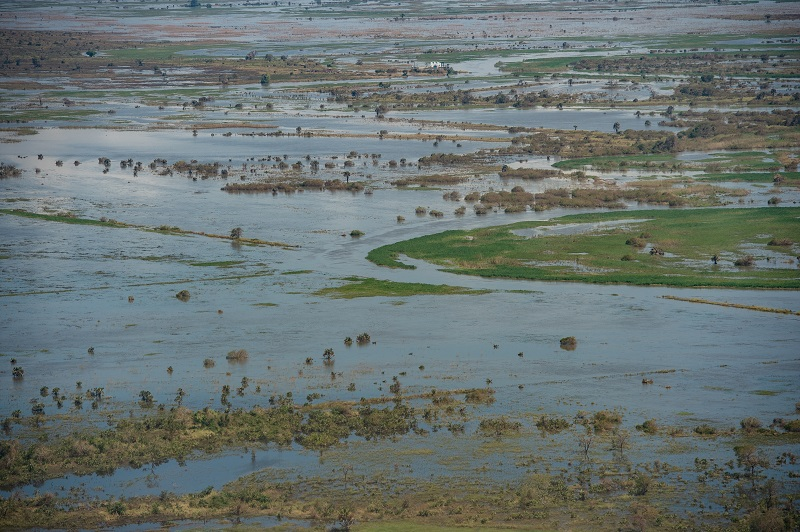 Flooded farmland in Mozambique