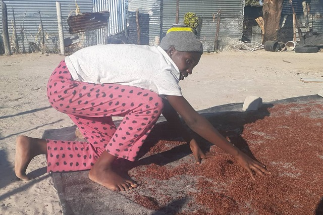 Laeticia* spreads out fresh sorghum in preparation to sell it.