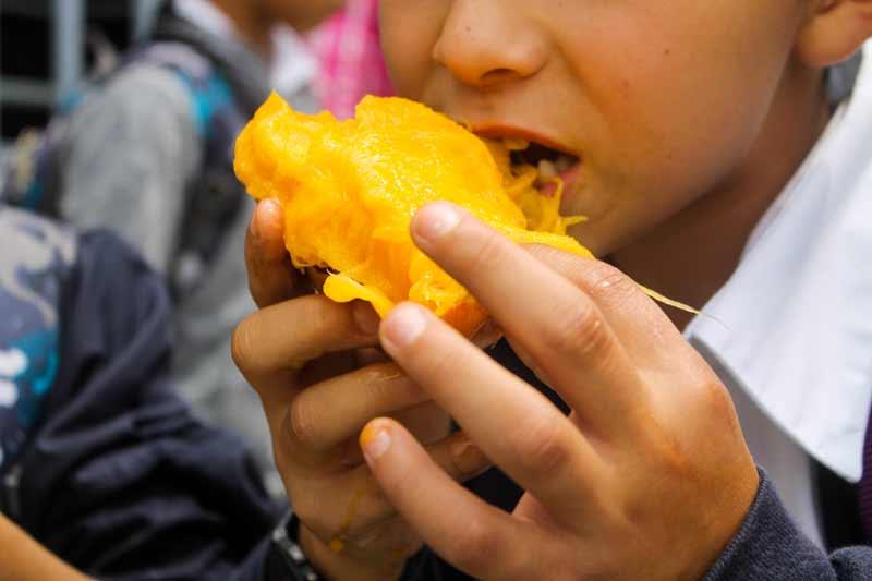 Oscar eating a mango